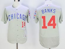 mens majestic chicago cubs cubs #14 ernie banks gray Flex Base jersey