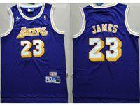 Mens Nba Los Angeles Lakers #23 Lebron James Purple Hardwood Classics Swingman Jersey