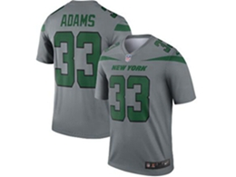Mes Nfl New York Jets #33 Jamal Adams Gray Nike Inverted Legend Jersey