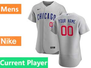 Mens Nike 2020 Chicago Cubs Current Player Gray Flex Base Jersey