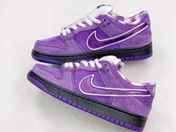 Mens And Women Concepts X Nike Sb Dunk Running Shoes Purple Color
